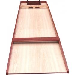 Shuffleboard Buffalo