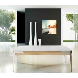 Krycí deska na kulečníkový stůl René Pierre Mao 6 ft